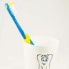 Zahngesundheitheitspfad Bild 1   Zahnbürste    Prohylaxe Grossmann Zahnarzt Eschweiler