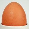 Zahngesundheitheitspfad Bild 11  Eier    Zahnarzt Eschweiler Dürwiß