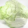 Zahngesundheitheitspfad Bild 14           Salat