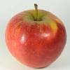 Zahngesundheitheitspfad Bild 4   Äpfel   Zahnarzt Dürwiß